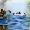 Singaraja Lovina Dophin, Air Panas dan Air Terjun Tour