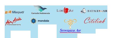 tiket pesawat murah di wisatabaliaga.com
